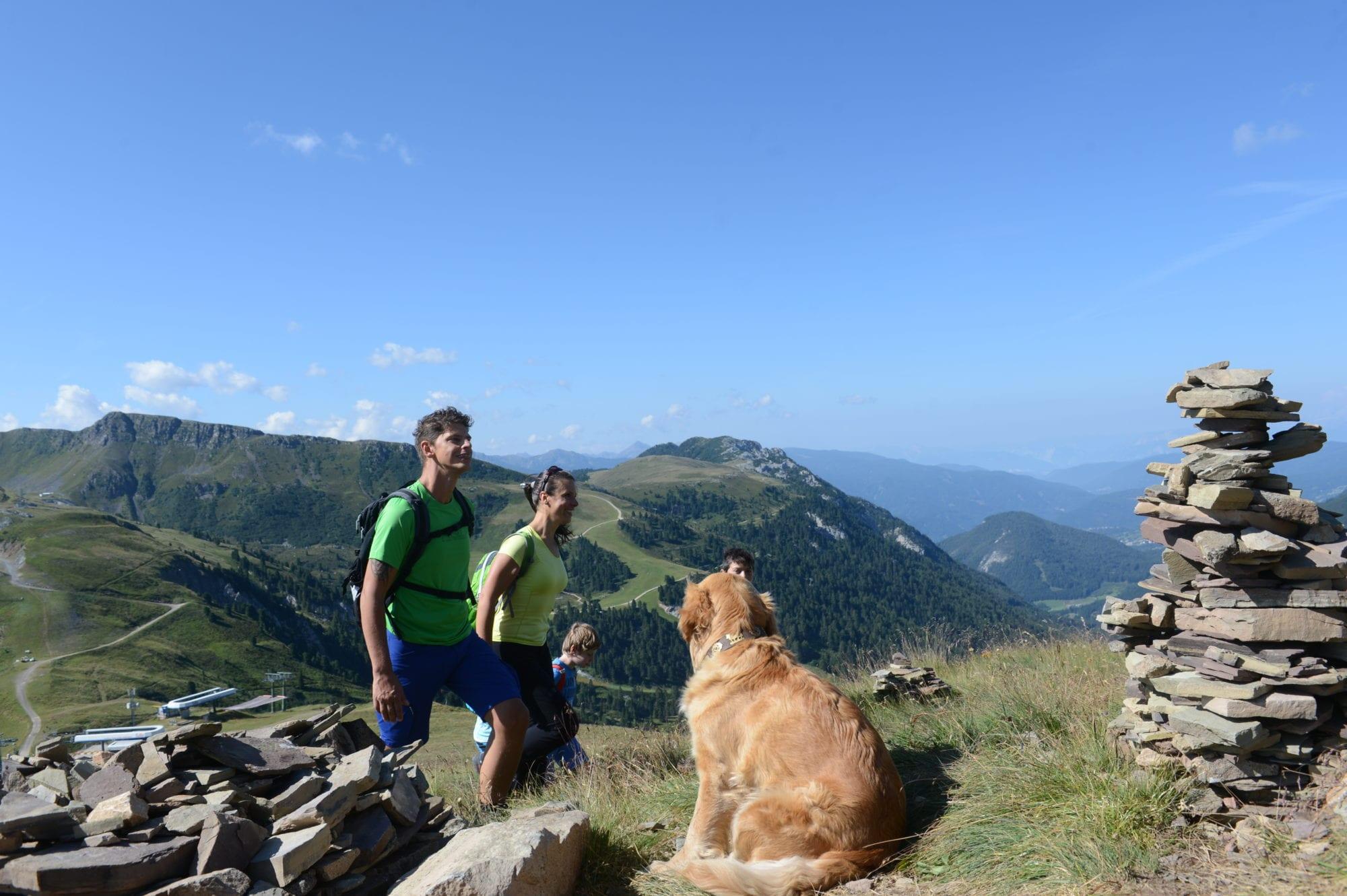 Urlaub mit dein Hund